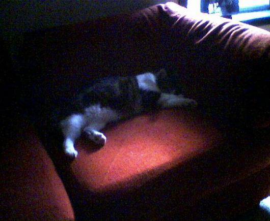 sleeping emma