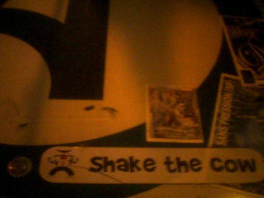 Shake the Karl