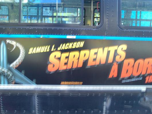 snakes sur le bus