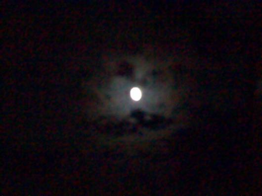 zoom night test