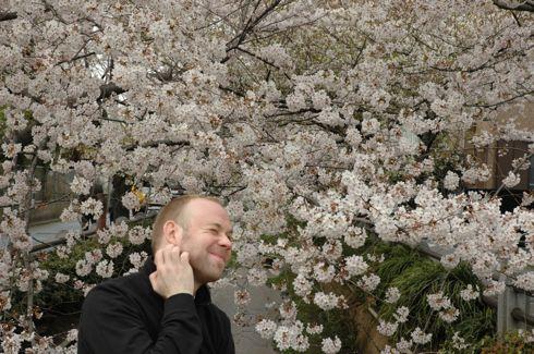 Bopuc-Sakura